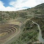 Terraced fields, Inca trail, Peru