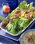 Marinated and grilled chicken leg on bed of lettuce Stock Photo - Premium Royalty-Free, Artist: foodanddrinkphotos, Code: 652-01668091