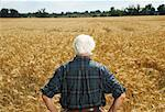 Man Standing in Grain Field