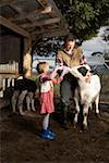Young girl (6-7) assisting father in calf feeding Stock Photo - Premium Royalty-Free, Artist: Glowimages, Code: 613-01730003