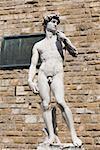 Statue in front of a brick wall, Michelangelo's David, Piazza Della Signoria, Florence, Italy