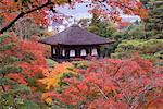 Garden at Ginkaku-ji Temple, Kyoto, Kansai, Honshu, Japan