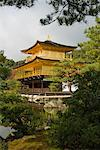 Kinkakuji Temple, Kyoto, Japan    Stock Photo - Premium Rights-Managed, Artist: Jochen Schlenker, Code: 700-01788050