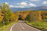 Road in Shiretoko National Park, Hokkaido, Japan    Stock Photo - Premium Rights-Managed, Artist: Jochen Schlenker, Code: 700-01788087