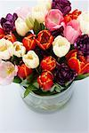 Close-Up of Tulips in Vase    Stock Photo - Premium Rights-Managed, Artist: David Muir, Code: 700-01788537