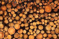 Stack of Wood    Stock Photo - Premium Rights-Managednull, Code: 700-01788636