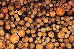 Stack of Wood    Stock Photo - Premium Rights-Managed, Artist: JW, Code: 700-01788636