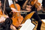 Classical Music Concert, String Instruments    Stock Photo - Premium Rights-Managed, Artist: Bryan Reinhart, Code: 700-01790143