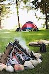 Campfire and tent Stock Photo - Premium Royalty-Free, Artist: Derek Shapton, Code: 621-01799141