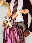 Portrait of Couple With Their Dog in a Bag