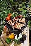 Pork chops, sausages & vegetables on barbecue in open air Stock Photo - Premium Royalty-Free, Artist: Kevin Dodge, Code: 659-01846534