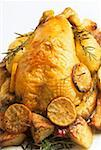 Roast chicken with lemon slices and rosemary Stock Photo - Premium Royalty-Freenull, Code: 659-01850920