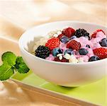 Rice pudding with mixed berries and fruit sauce Stock Photo - Premium Royalty-Freenull, Code: 659-01852160