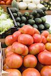 Tomatoes in a crate at a market Stock Photo - Premium Royalty-Freenull, Code: 659-01858800