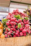 Fresh radishes in a crate at a market Stock Photo - Premium Royalty-Freenull, Code: 659-01858808
