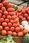 A heap of plum tomatoes in a crate at a market Stock Photo - Premium Royalty-Freenull, Code: 659-01858837