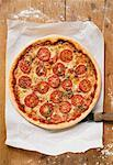 Cheese and tomato pizza with oregano on paper Stock Photo - Premium Royalty-Freenull, Code: 659-01859957