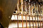 Steckerlfische (fish on sticks) on grill (Oktoberfest, Munich) Stock Photo - Premium Royalty-Free, Artist: Edward Pond, Code: 659-01860647