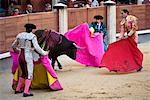 Bullfighting, Plaza de Toros de las Ventas, Madrid, Spain    Stock Photo - Premium Rights-Managed, Artist: R. Ian Lloyd, Code: 700-01879827