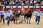 Bullfighting, Plaza de Toros de las Ventas, Madrid, Spain    Stock Photo - Premium Rights-Managed, Artist: R. Ian Lloyd, Code: 700-01879831