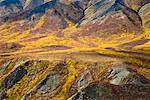 Alpine Tundra in Autumn, Tombstone Territorial Park, Yukon, Canada    Stock Photo - Premium Royalty-Free, Artist: J. David Andrews, Code: 600-01954710