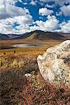 Rock in Tundra, Tombstone Territorial Park, Yukon, Canada    Stock Photo - Premium Rights-Managed, Artist: J. David Andrews, Code: 700-01955386