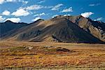 Mountains and Plains, Tombstone Territorial Park, Yukon, Canada    Stock Photo - Premium Rights-Managed, Artist: J. David Andrews, Code: 700-01955401