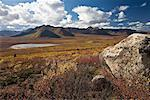 Rock in Tundra, Tombstone Territorial Park, Yukon, Canada    Stock Photo - Premium Rights-Managed, Artist: J. David Andrews, Code: 700-01955402