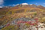 Hillside and Mountains, Tombstone Territorial Park, Yukon, Canada    Stock Photo - Premium Rights-Managed, Artist: J. David Andrews, Code: 700-01955405