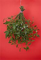 Hanging mistletoe Stock Photo - Premium Royalty-Freenull, Code: 653-02002209