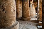 Medinet Habu Temple, West Bank, Luxor, Egypt    Stock Photo - Premium Royalty-Free, Artist: Jochen Schlenker, Code: 600-02046677