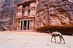 The Treasury, Petra, Arabah, Jordan    Stock Photo - Premium Rights-Managed, Artist: Jochen Schlenker, Code: 700-02046771