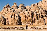 Sheep Herding, Siq al-Berid, Jordan    Stock Photo - Premium Rights-Managed, Artist: Jochen Schlenker, Code: 700-02046800