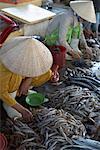 Selling Fish, Duong Dong Market, Duong Dong, Phu Quoc, Vietnam