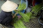 Woman Sorting Long Beans, Ben Thanh Market, Ho Chi Minh City, Vietnam