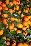 Close-up of Fruit at Market, Chau Doc, An Giang, Vietnam Stock Photo - Premium Royalty-Free, Artist: Edward Pond, Code: 600-02063846