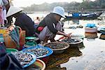 Fish Market, Thu Bon River, Hoi An, Quang Nam, Vietnam