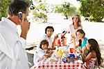Family Having a Picnic, Malibu, California, USA