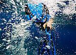 Woman Snorkeling    Stock Photo - Premium Rights-Managed, Artist: Michael Eudenbach, Code: 700-02123745