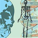 Collage with human skeleton and science elements Stock Photo - Premium Royalty-Freenull, Code: 645-02153601