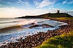 Dunstanburgh Castle, Northumberland, England    Stock Photo - Premium Rights-Managed, Artist: Tim Hurst, Code: 700-02201036
