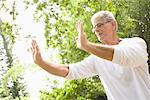 Man Practicing Tai Chi    Stock Photo - Premium Rights-Managed, Artist: Raoul Minsart, Code: 700-02201217