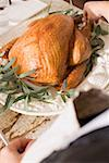 Woman garnishing roast turkey with herbs Stock Photo - Premium Royalty-Freenull, Code: 659-02213982