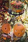 Autumnal garden decoration with pumpkins Stock Photo - Premium Royalty-Freenull, Code: 659-02214128