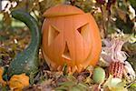 Carved pumpkin face in garden Stock Photo - Premium Royalty-Freenull, Code: 659-02214130