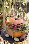 Pumpkin decorated with flowers on garden table Stock Photo - Premium Royalty-Free, Artist: Jerzyworks, Code: 659-02214131