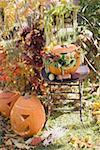 Autumnal garden decoration with pumpkins Stock Photo - Premium Royalty-Freenull, Code: 659-02214132