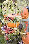 Autumnal garden decoration with pumpkins Stock Photo - Premium Royalty-Freenull, Code: 659-02214138