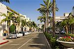View Down Rodeo Drive, Beverly Hills, California, USA    Stock Photo - Premium Royalty-Free, Artist: Damir Frkovic, Code: 600-02245315