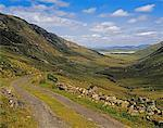 Owenwee Pass, Near Ardara, County Donegal, Ireland    Stock Photo - Premium Rights-Managed, Artist: IIC, Code: 832-02252859
